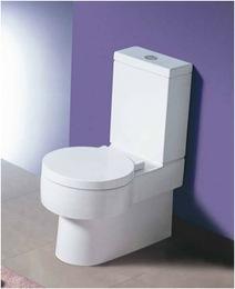 caroma_toilet